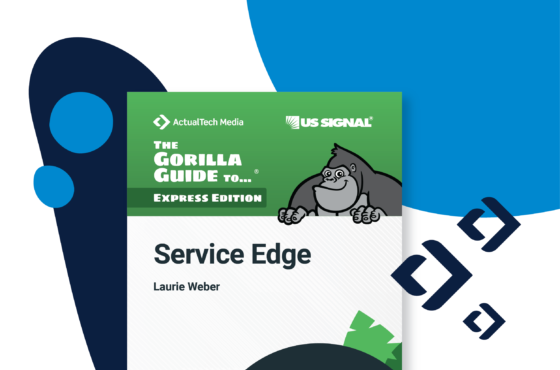 The Gorilla Guide to Service Edge